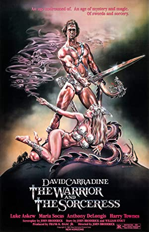The Warrior and the Sorceress poster